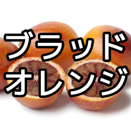 ブラッドオレンジの育て方・栽培方法