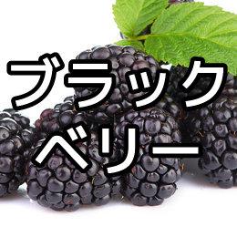 ブラックベリーの育て方・栽培方法