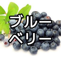 ブルーベリーの育て方・栽培方法