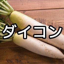 ダイコンの育て方・栽培方法