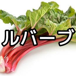 ルバーブの育て方・栽培方法