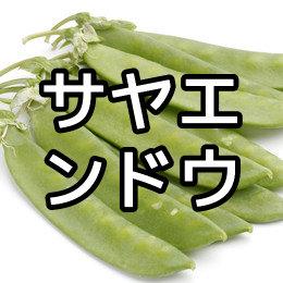 サヤエンドウの育て方・栽培方法