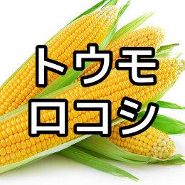 トウモロコシの育て方・栽培方法